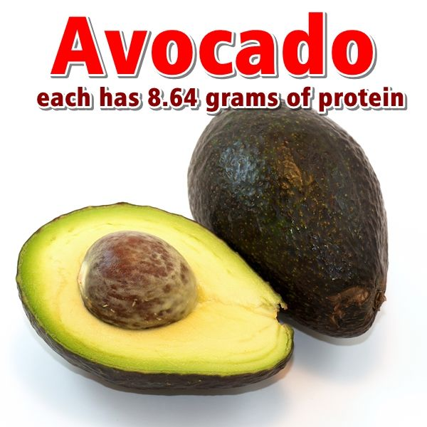 each avocado has 8.64 grams of protein